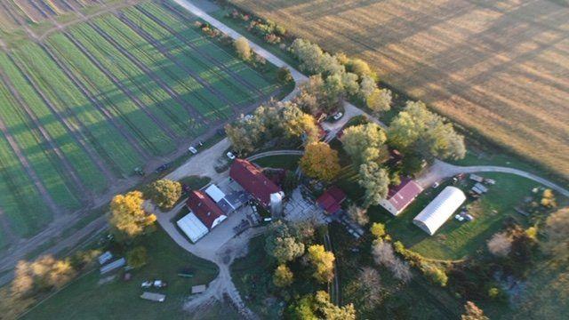 Previous Happening: Week 17 Farm News Coming Soon