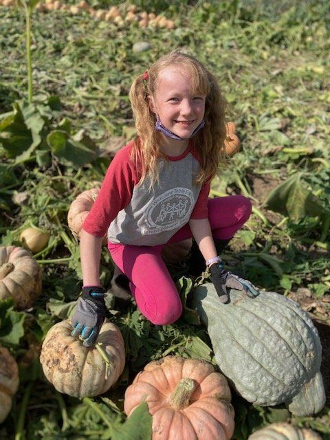 Previous Happening: Farm Happenings for October 13, 2020