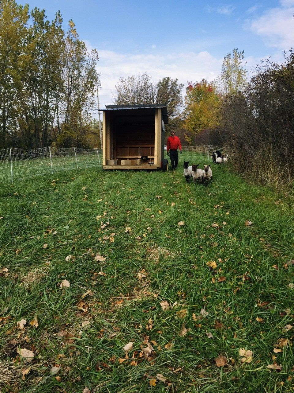 Previous Happening: Farm Happenings for October 21, 2020