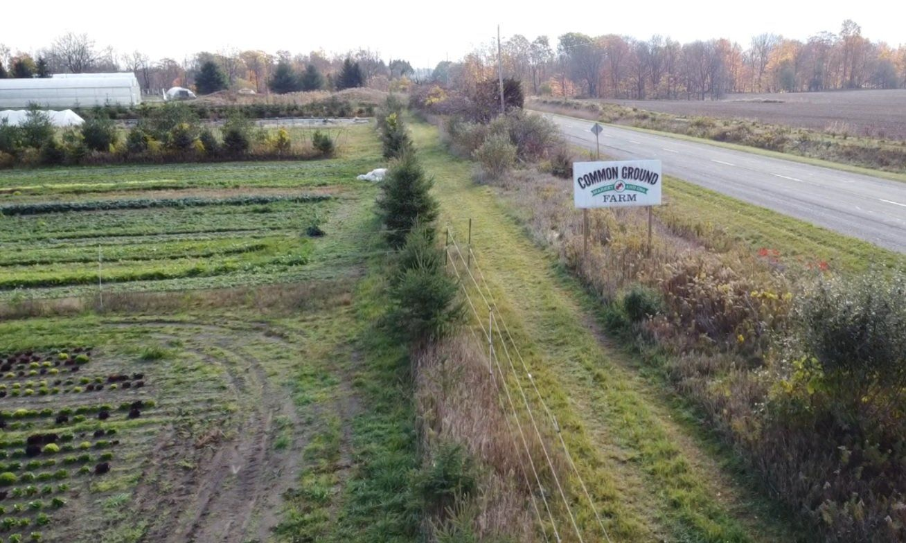 Previous Happening: Farm Happenings for October 29, 2020
