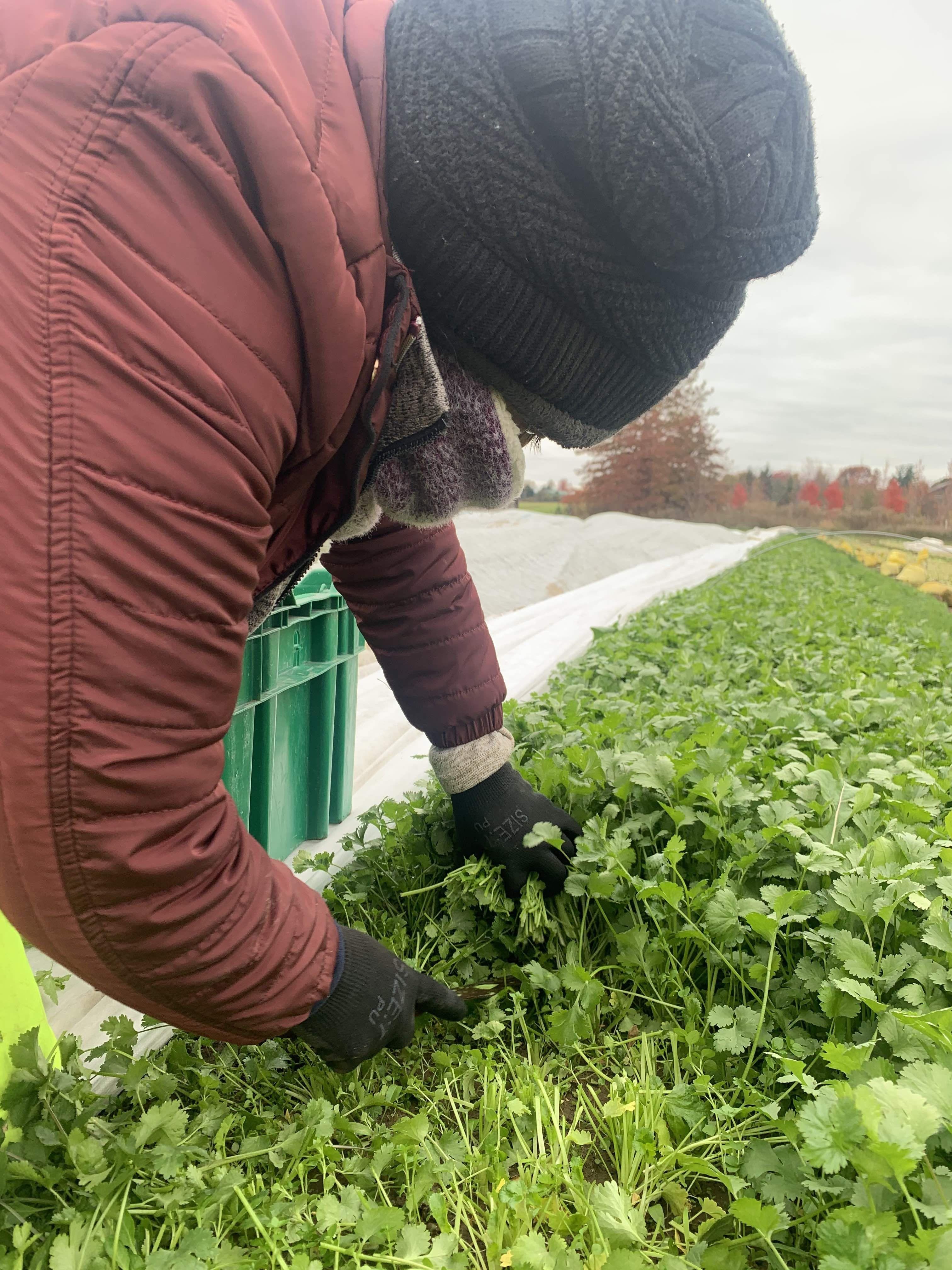 Farmer John Writes: Believe It Or Not