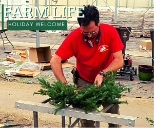 Holiday Pop Up Farm Stand