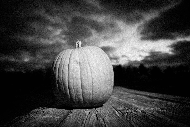 Farm Happenings for Oxen Hill Farm Autumn CSA #3 of 3 (week of December 3- December 8, 2020)