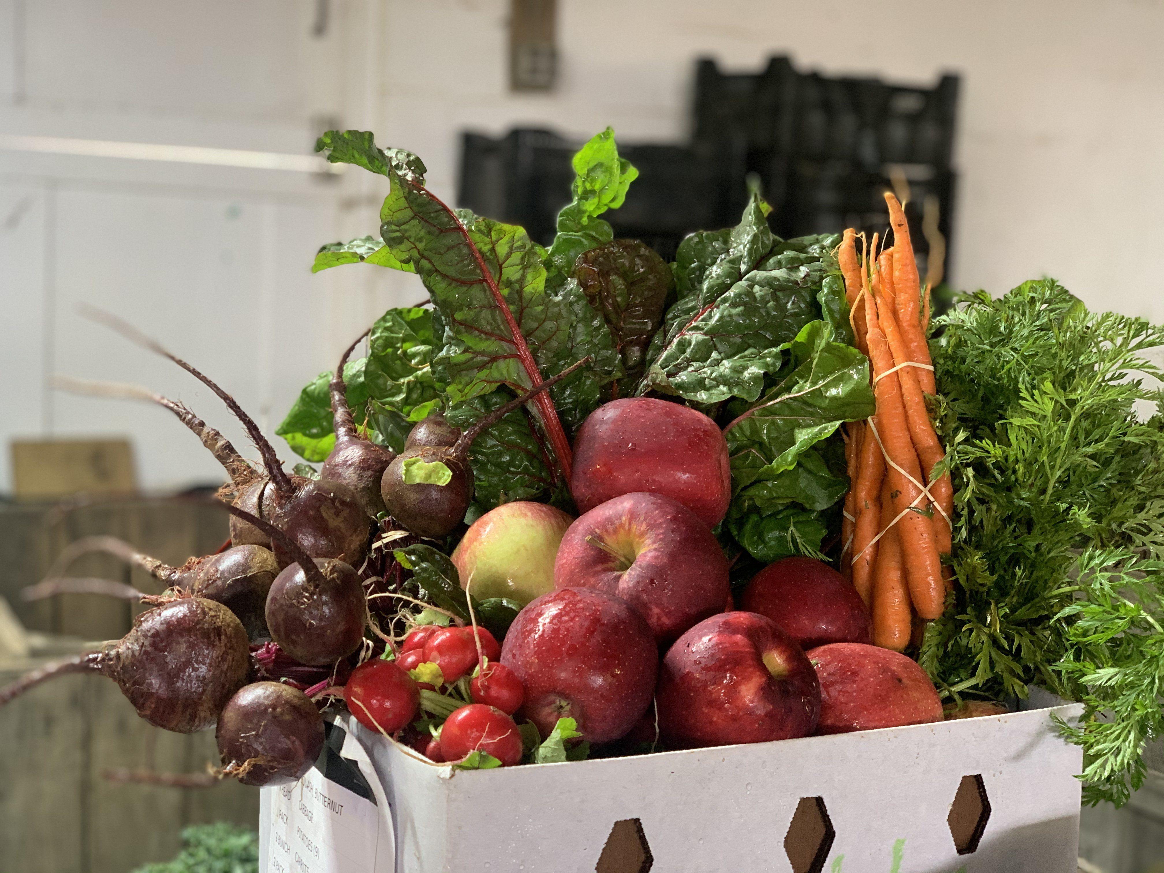 Previous Happening: Holiday Harvest Week 3
