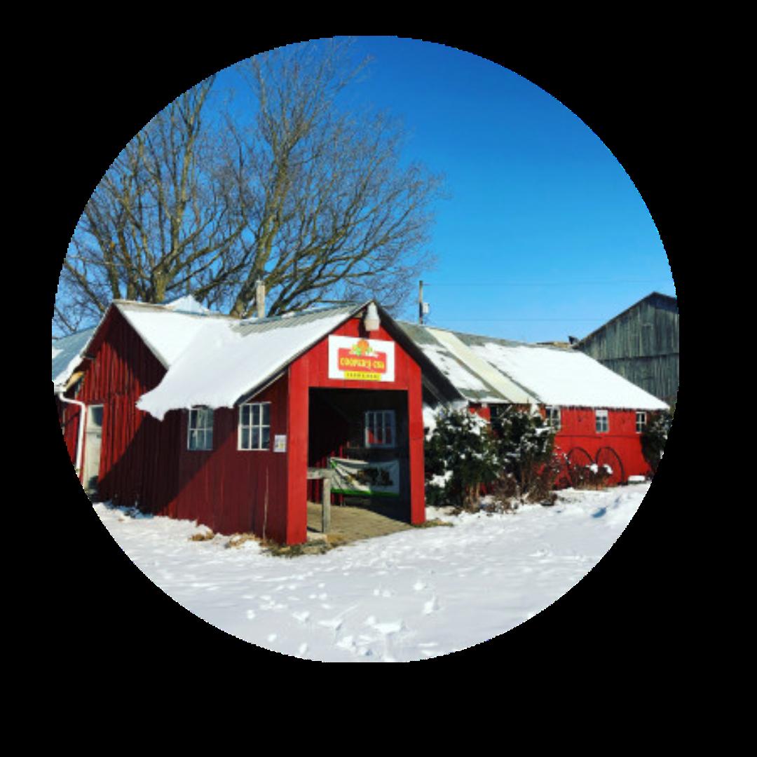 Cooper's CSA Winter Farm Veggie Box Jan 12-16 2021