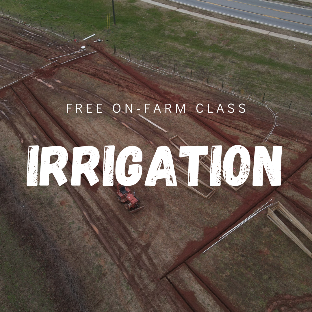 Previous Happening: Free Class this Sunday! Learn about Irrigation!