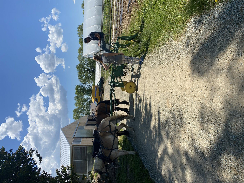 Farm Happenings for Week of May 17, 2021