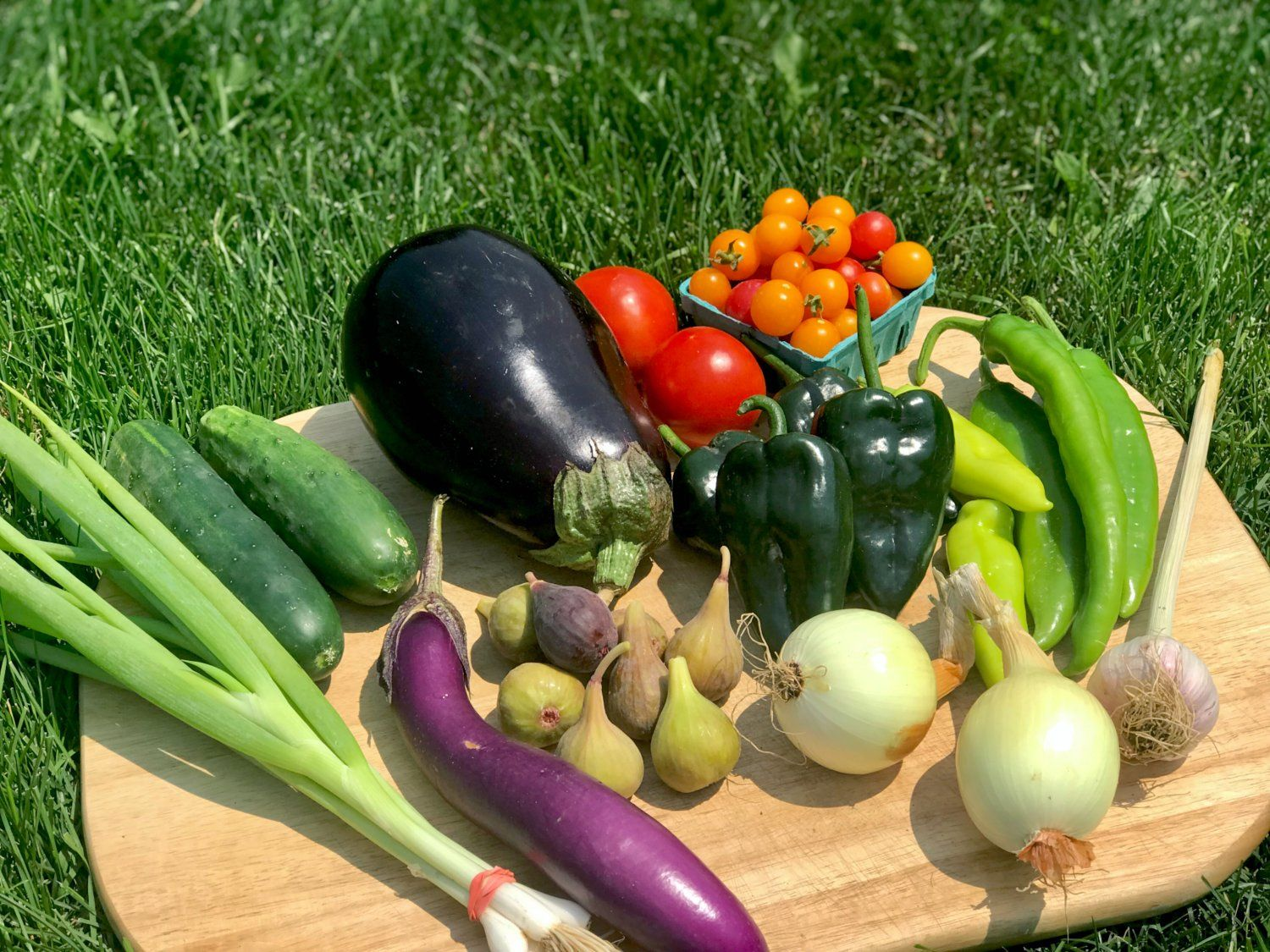 Previous Happening: Farm Happenings for August 6, 2021