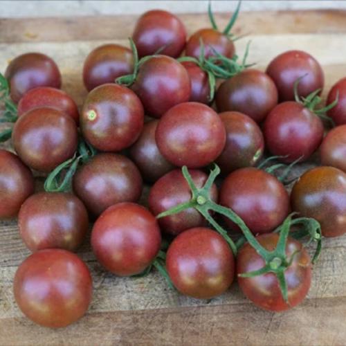 Tomato Share Re-do