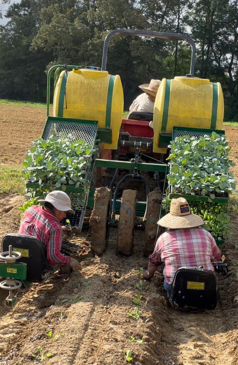 Previous Happening: Farm Happenings for Week of September 6th