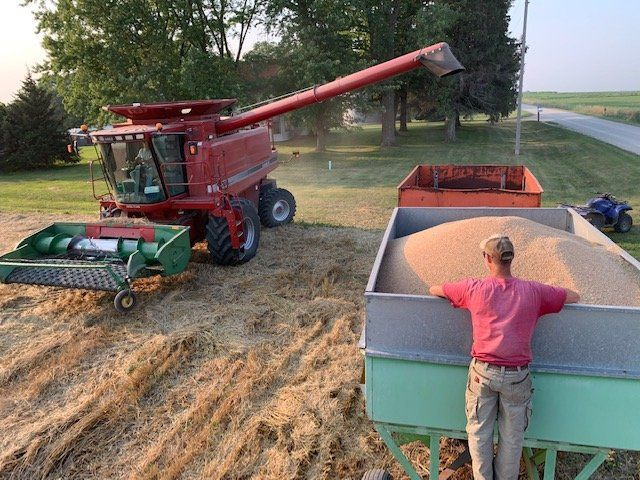 Previous Happening: Jack on our Winter Wheat Harvest + Flour in Winter CSA Shares!