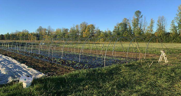 Next Happening: Farm Happenings for Sept 20-25, 2021