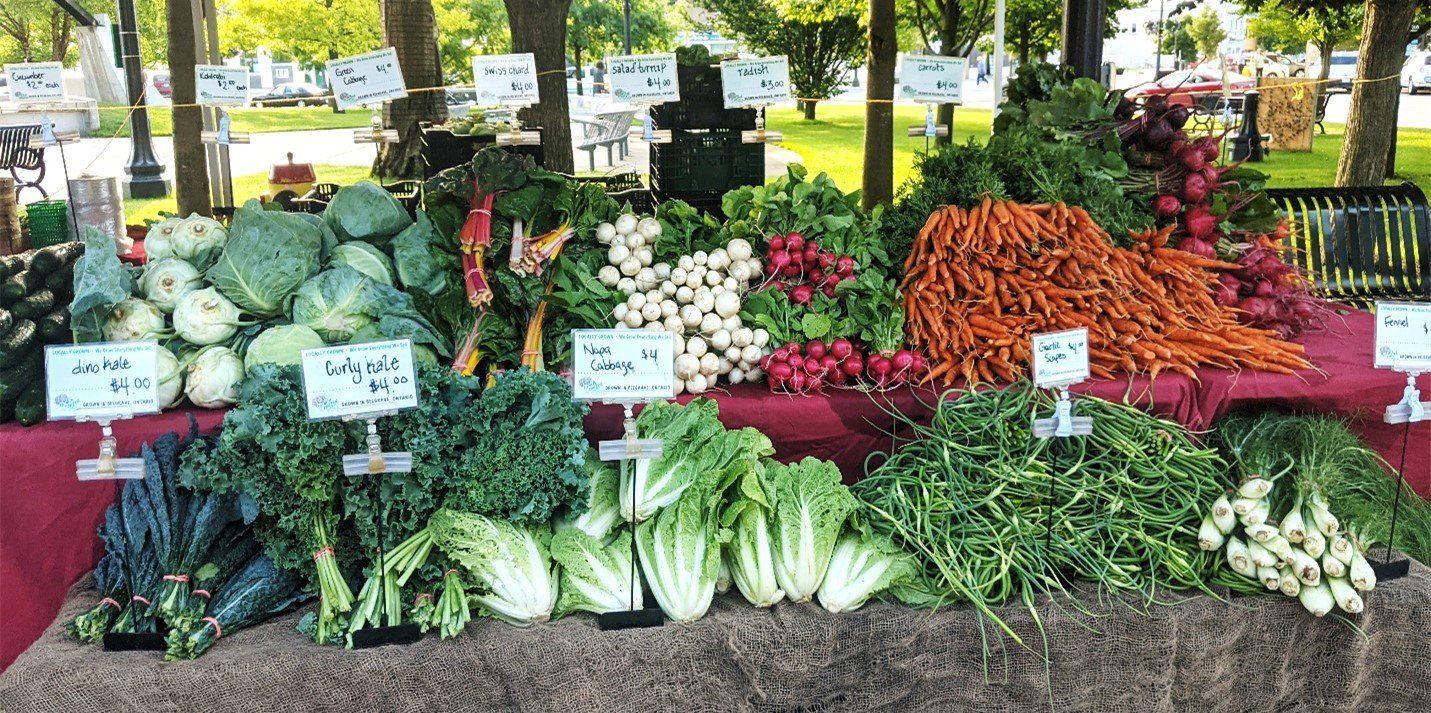 Lettuce Rejoice! September 30, 2021- The Power of Food