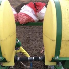Farm Happenings for November 7, 2018: Fall CSA Week 3 of 8!