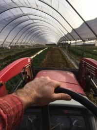 Farm Happenings for February 7, 2019