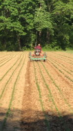 Farm Happenings for April 29, 2019