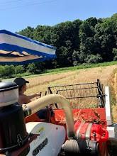 Farm Happenings for August 6, 2019 (week 9)