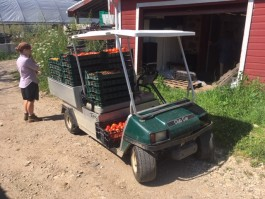 Farm Happenings for August 21, 2019