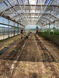 Farm Happenings for October 8, 2019 (WEEK 18)