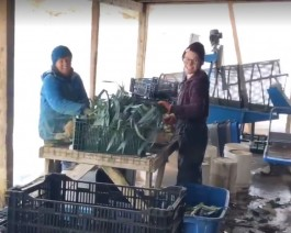 Farm Happenings for November 21, 2019