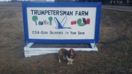 Farm Happenings for Week of May 17, 2020