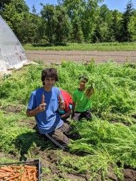 Farm Happenings for June 25, 2020