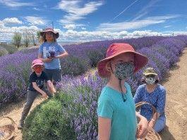 Farm Happenings for June 30, 2020