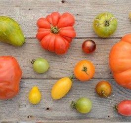 Time to customize your share for the LAST week of Spring/Summer CSA!!