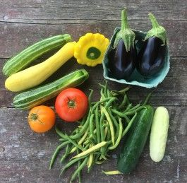 Common Roots Urban Farm CSA Newsletter #7