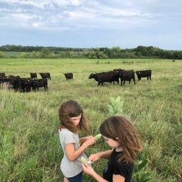 Online Farm Stand: August 5 & 6, 2020