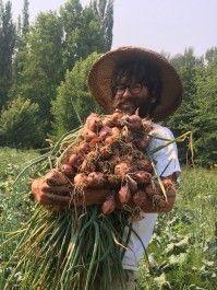 Farm Happenings for August 5, 2020