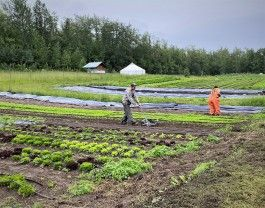 Farm Happenings for August 11, 2020