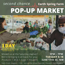 POP-UP MARKET - Tuesday 8.18 only!