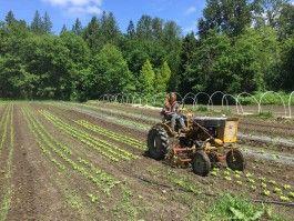 Farm Happenings for September 16, 2020