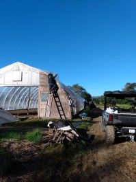 Farm Happenings for October 3, 2020