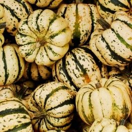 Online Farm Stand: October 21-24, 2020
