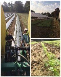 Farm Happenings for October 20, 2020