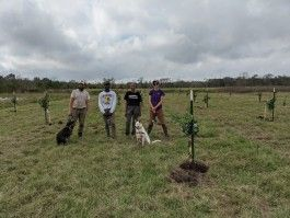 Planting trees and giving thanks