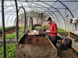 Farm Happenings for February 11, 2021