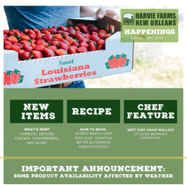 Harvie Farms New Orleans Happenings for the Week of February 22, 2021