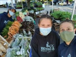 Digital FarmStand for Sat., May 8