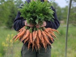 Farm Happenings for June 10, 2021