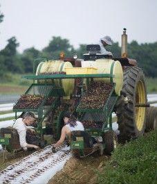 Farm Happenings for July 30, 2021