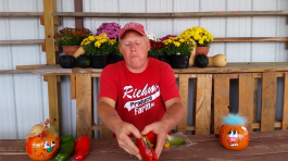Farm Happenings (#13 DELIVERY SUMMER out of 20)
