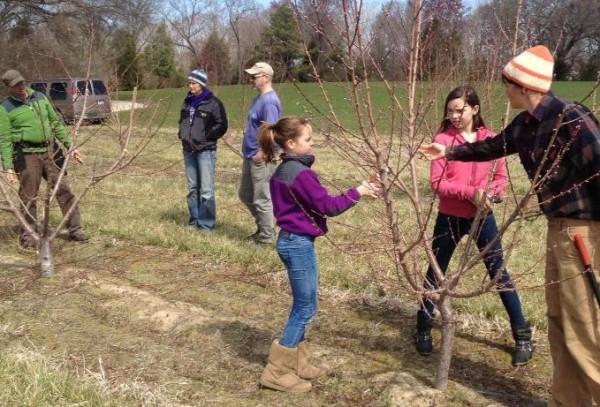 Farm Visit, Spring Pruning Demonstration