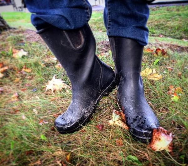 Week 12 Winter/Spring Cooper's CSA Farm Happenings