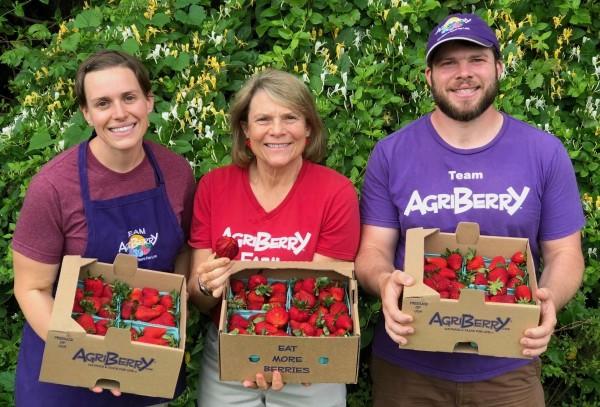 Week 3: Strawberries Galore