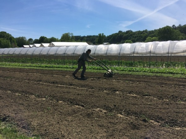 Farm Happenings for June 18, 2019