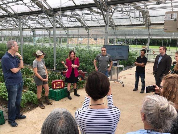 Farm Happenings for June 25, 2019 (week 3)