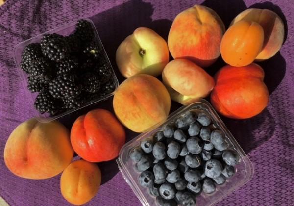 WEEK 12: Tree Fruit Medley!